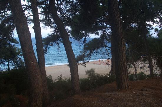 Skala, Grecia: Наш любимы пляж Скалы.