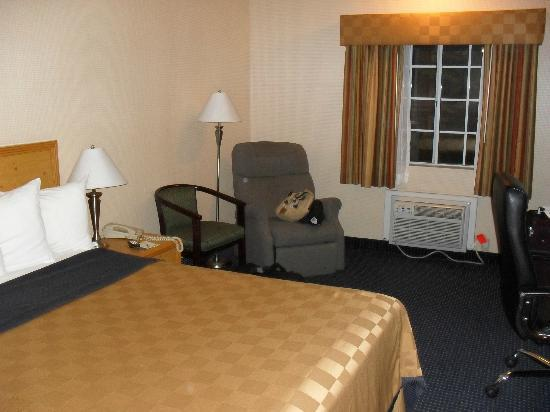 Days Inn Flagstaff I-40: Chambre
