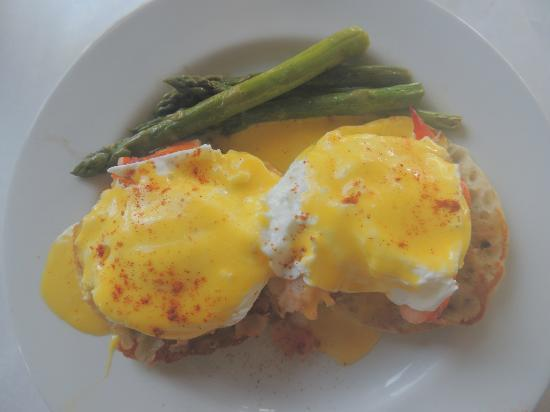 Harbor Fish Market and Grille: lobster benedict