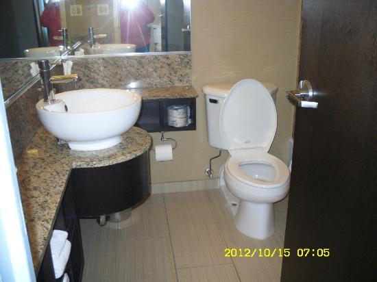Crowne Plaza Chicago O'Hare: Bathroom