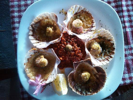 Konoba Baron Gautsch: Capesante shells