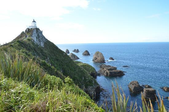 Catlins Retreat Guest House: Nugget Point