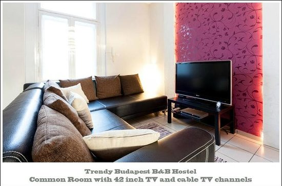 Trendy Budapest B&B Hostel - Common TV Room in Budapest Oldtown next to Chain Bridge