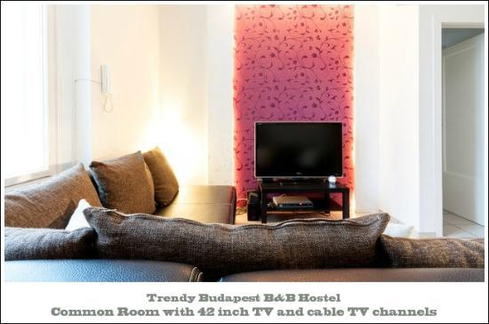 Trendy Budapest B&B Hostel - Common TV Room in Budapest Old-Town next to Chain Bridge