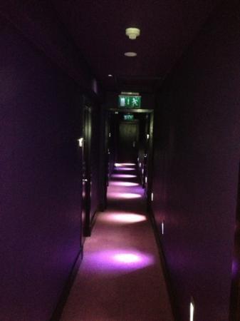 Hampton Hotel: hallway