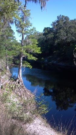 Stephen Foster Folk Culture Center State Park: Suwanee river