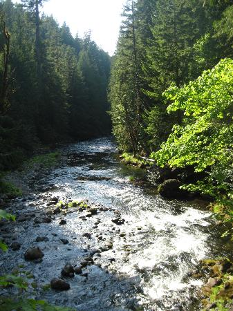 Salmon River Trail: salmon river #742