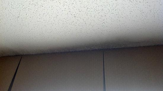 Wingate by Wyndham Greensboro : Black Seams along the window and Ceiling is black around curtain