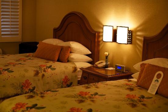 Candy Cane Inn: Premium Room