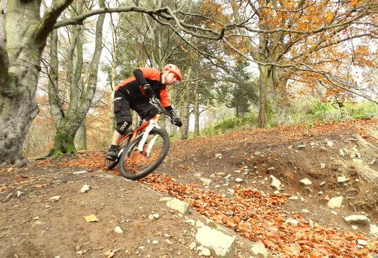 Ridelines (Mountain Bike Tuition)