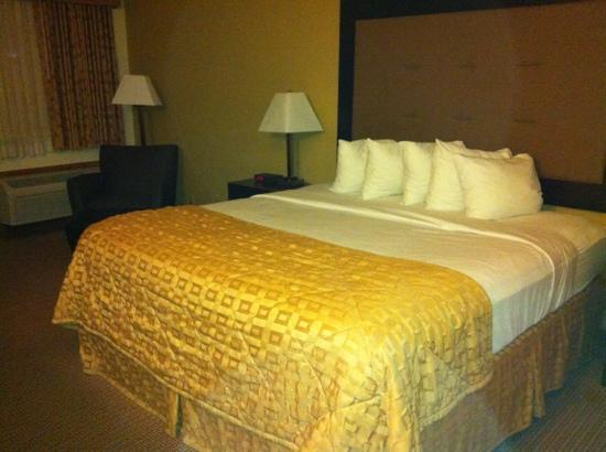 Quality Inn & Suites: very comfortable