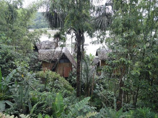 Cotococha Amazon Lodge: vue sur les cabanes depuis le point de vue au dessus du bar