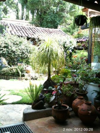 Bela's B&B: jardin magnifique