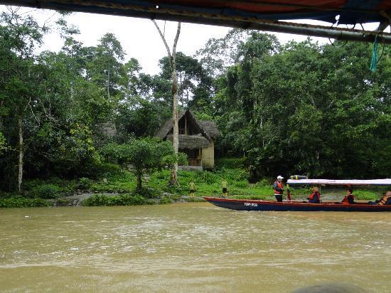 Cotococha Amazon Lodge: vue sur notre cabane vue depuis la pirogue sur le Rio Napo