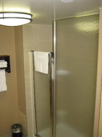 Hampton Inn by Hilton North Bay : shower