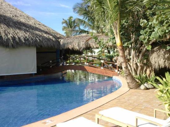 Excellence Punta Cana: Swim-up bar