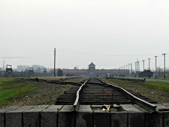 Cracow City Tours: Birkenau