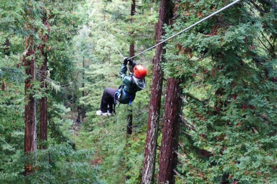 ‪‪Sonoma Canopy Tours‬: Zipping through the trees