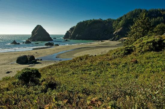 Brookings, OR: Whalehead Beach at Samuel H Boardman State Park