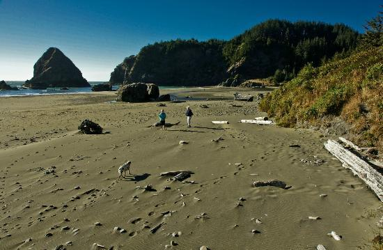 Brookings, OR: Beach walkers on Whalehead Beach