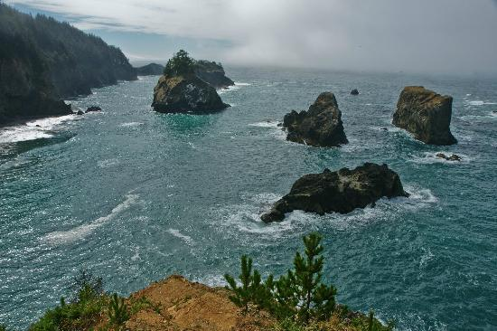 Brookings, OR: Morning view south from the Arch Rock overlook.