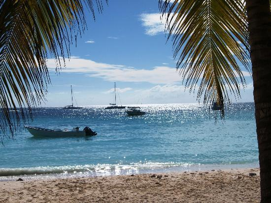 Dreams Punta Cana Resort & Spa: Saona beach