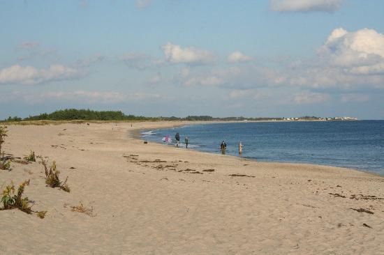 Shelter Harbor Inn: Area Beach