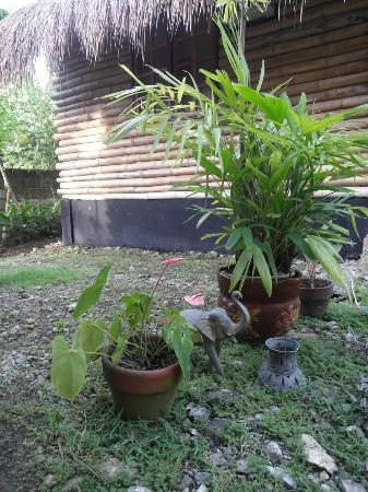 Subli Guest Cabins: lovely decoration and flower pots