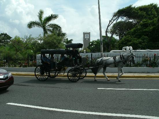 Tres Palmas Inn: Viejo San Juan