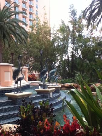 JW Marriott Orlando, Grande Lakes: Pool area