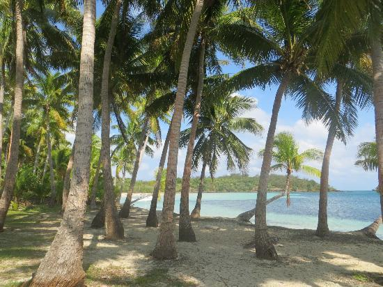 Navutu Stars Fiji Hotel & Resort: beach of the local village