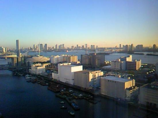 Dai-Ichi Hotel Tokyo Seafort: heyakara1