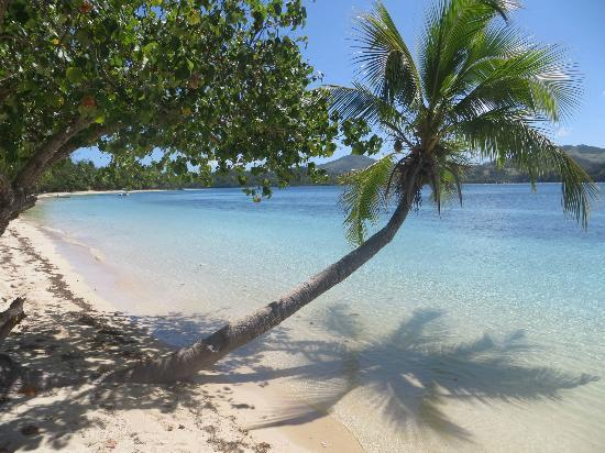 Navutu Stars Fiji Hotel & Resort: one of the many beaches snorkelled - Blue Lagoon