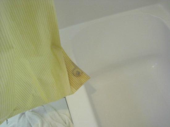 Days Inn Blythe CA: mildew on shower curtain