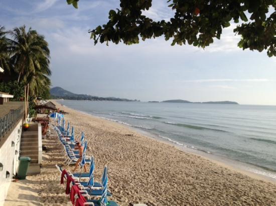 Chaweng Cove Beach Resort : The beach