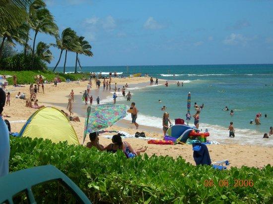 Waiohai Beach Club Kauai Hi