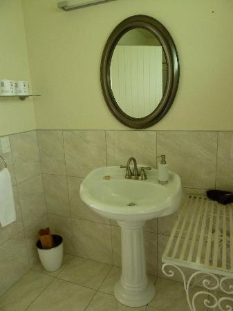 Ratanui Lodge: Sink and vanity area