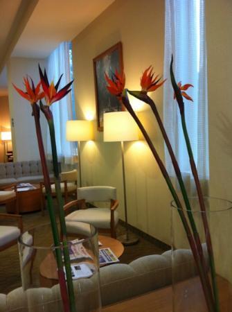 Hampton Inn by Hilton Guadalajara/Expo: lobby del hotel !!!! nice