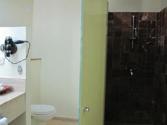 Grand Palladium Jamaica Resort & Spa: walk in shower