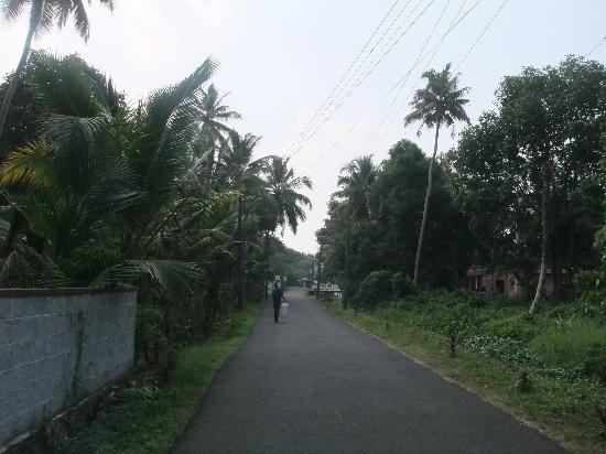 Illikkalam Lakeside Cottages: Walk through the roads