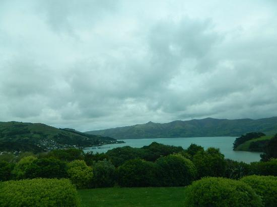 Akaroa TOP 10 Holiday Park: View from campevan