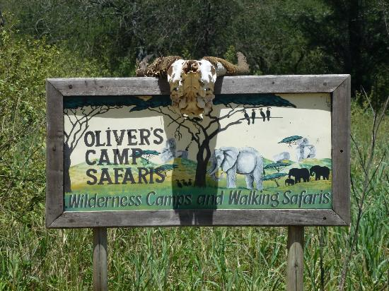 Oliver's Camp, Asilia Africa: Arrival