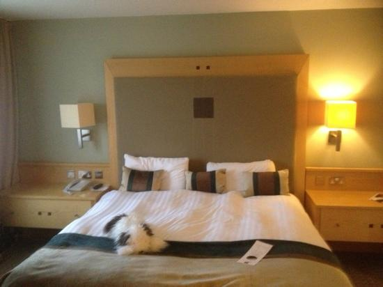 Lancaster House: lovely cumfy bed!