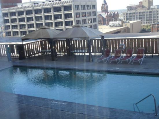 Crowne Plaza Hotel Dallas Downtown: Pool