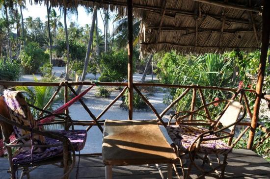 Sagando Hostel : Veranda and garden