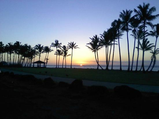 Kauai Beach House: I watched every sunrise... DIRECTLY BEHIND THE BEACH HOUSE