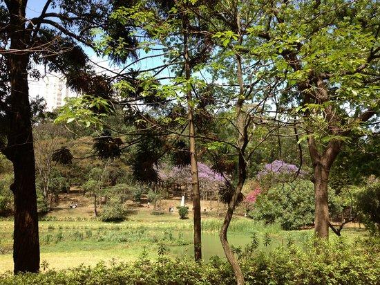 Aclimacao Park