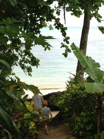 Matanivusi Surf Resort: The view from our bure