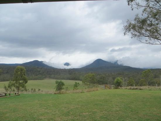 Spicers Canopy: outlook in the clouds!