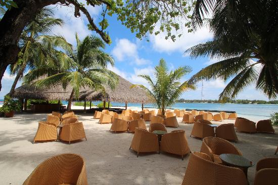 Kuramathi Island Resort: Bar by the infinity pool